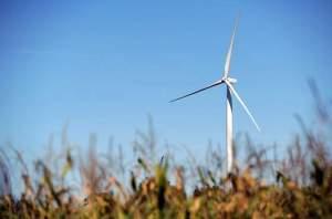 Wildcat Wind Farm photo